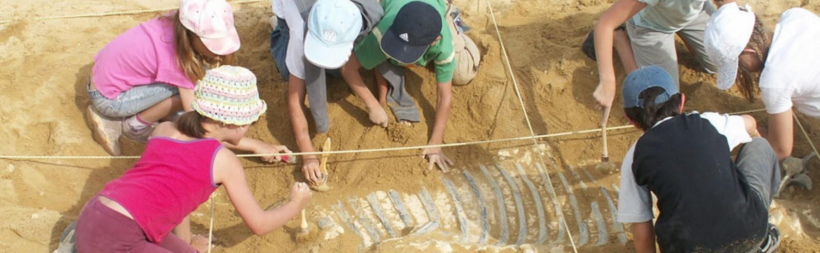 Paléopolis et ses ateliers pour enfants : exemple de fouilles.