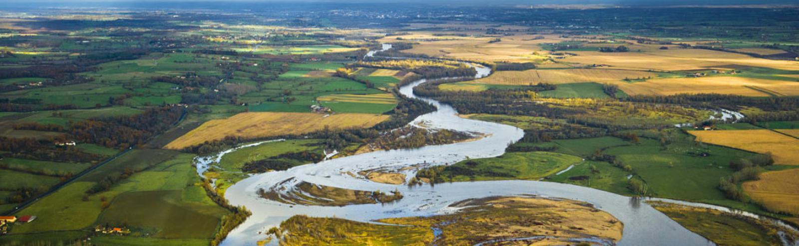 Réserve naturelle du val d'Allier : méandres, nature, visite avec un guide