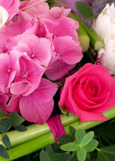 Le Jardin Fleuri : fleuriste, créateur de tendances